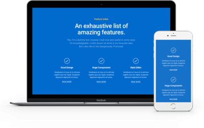 Useful Features Offered by Divi Theme