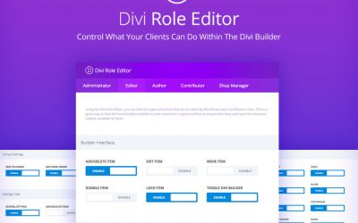 How to Use the Divi Role Editor