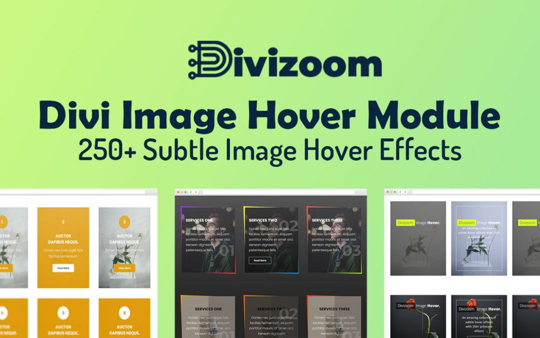 Divi Image Hover Extension Review